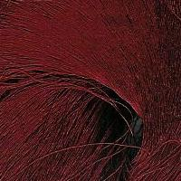 60/66 Pure Silk Organzine - Red Dark Red